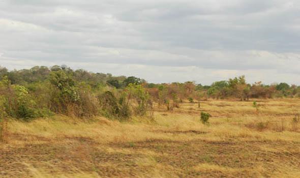 Dembara Wava Pic